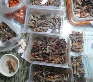 Wildlife Products seized in Bhubaneswar