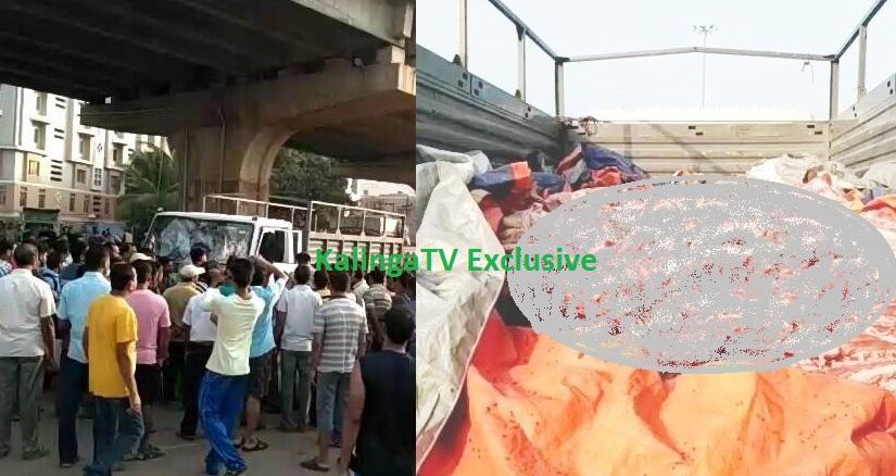 Beef laden truck seized in Rasulgarh, Bhubaneswar.