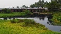 Musa Nala Puri