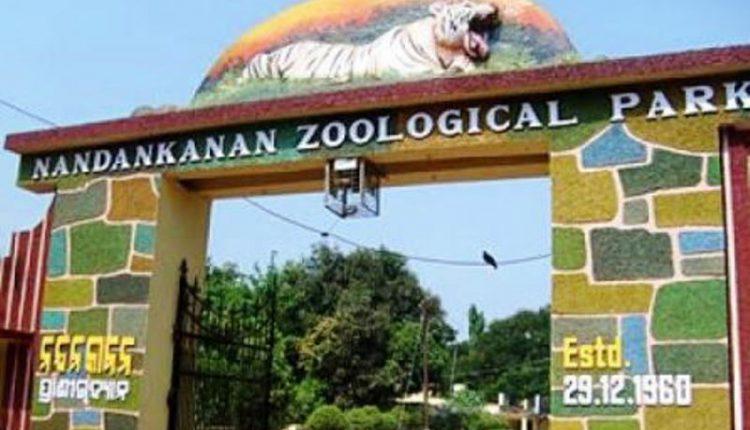 Nandankanan Bhubaneswar